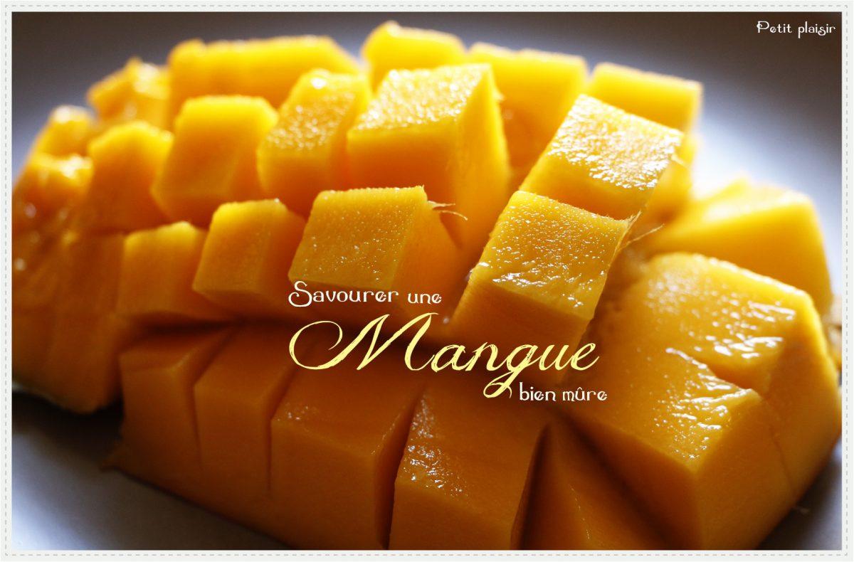 La première bouchée de mangue