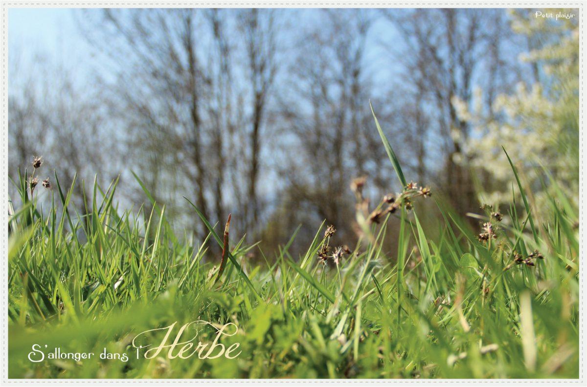 S'allonger dans l'herbe