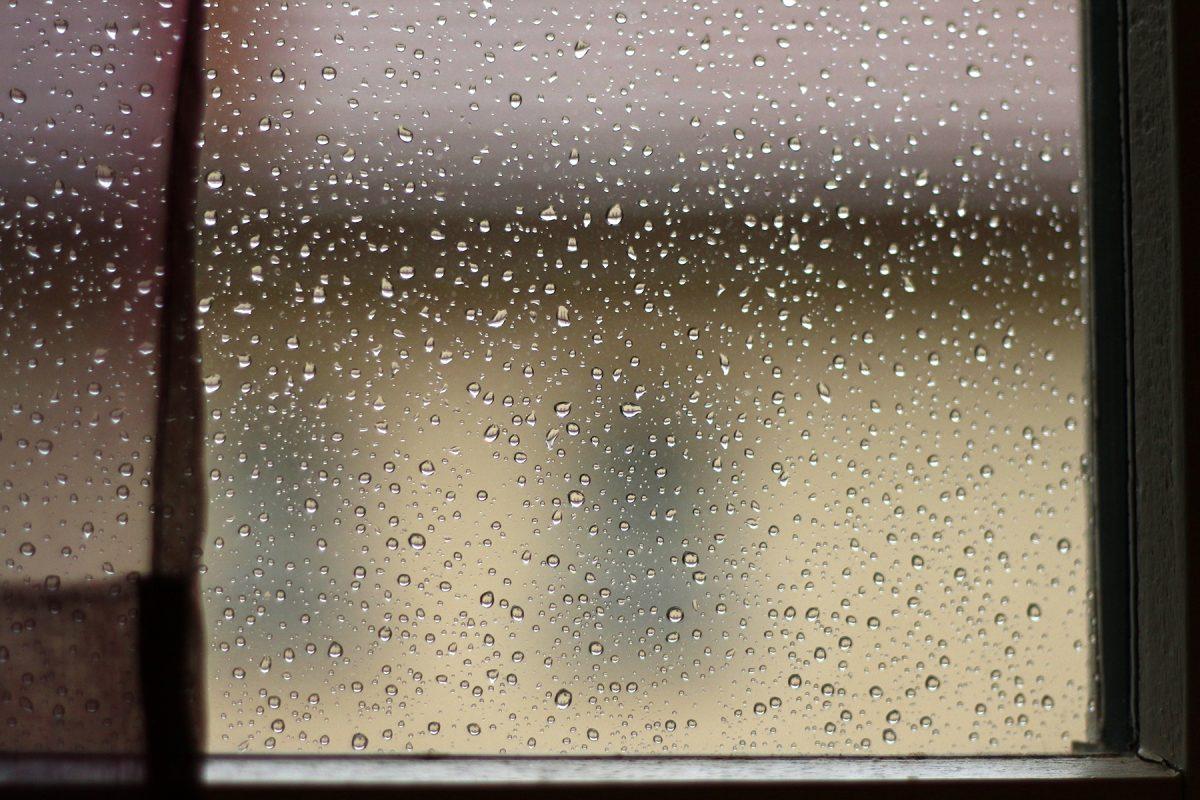 Mercredi pluvieux